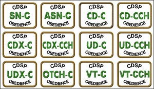 Patch CDSP (Regular)